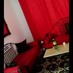 Tunis-immobilier-شقه-مفروشه-للايجار-باليوم-100دفي-تونس-العاصمة