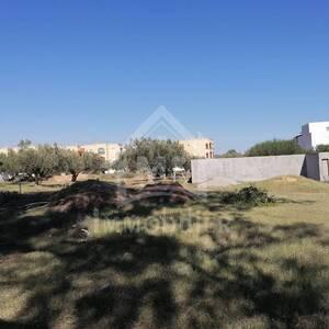 Nabeul-immobilier-A-Vendre-Terrains-555m²