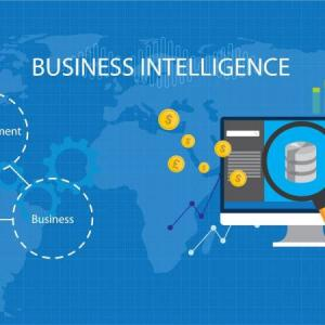 Tunis-emploi_et_services-Formation-Business-Intelligence